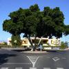 Thumbnail image for San Agustin – pikkukaupungin elämää Playa del Inglesin kupeessa